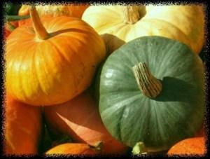 draft_lens2228087module12065639photo_1224037536orange_green_pumpkins2