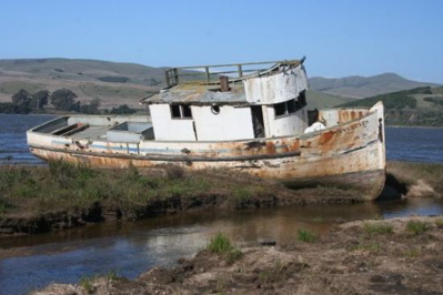 tomales-bay-point