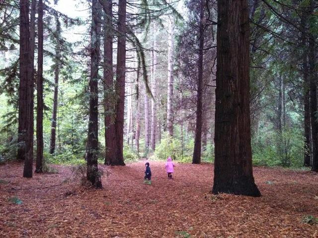 Rainy day parks Jana Ablin shot