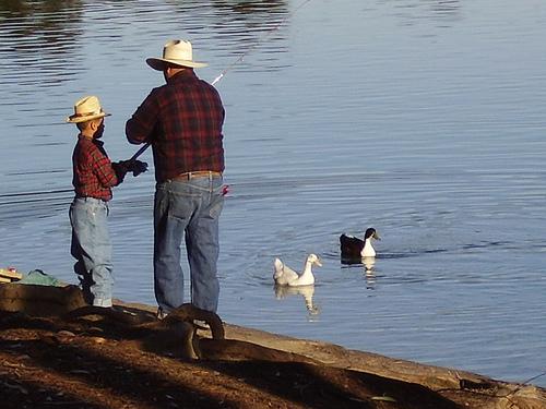 Chollas Lake Fishing