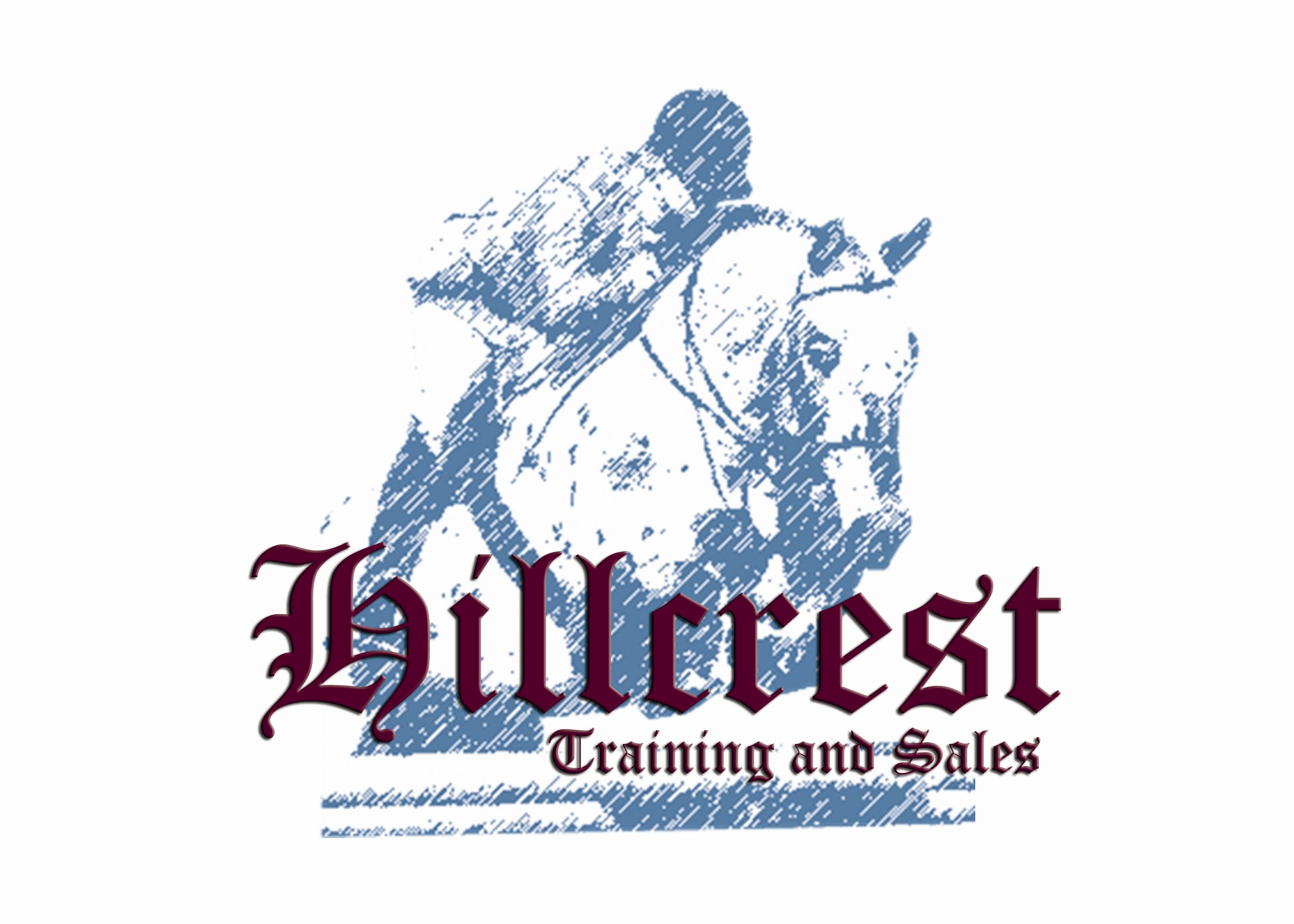 Riding Lessons at Hillcrest Training