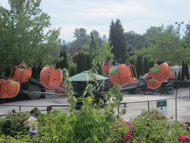 remlinger farms-flying pumpkins