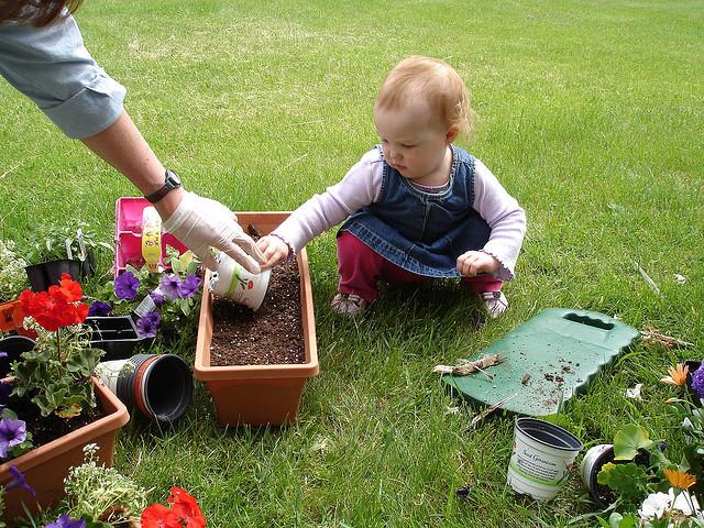 baby gardening