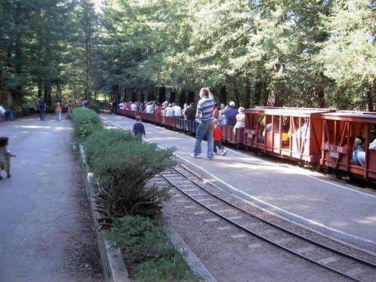 Redwood-Valley-Railway