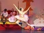 Summer and Fall Ballet at San Francisco Youth Ballet Academy