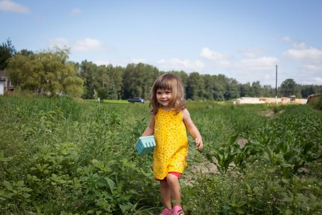 Blueberry Picking Gal