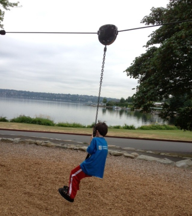 Seward park zip line