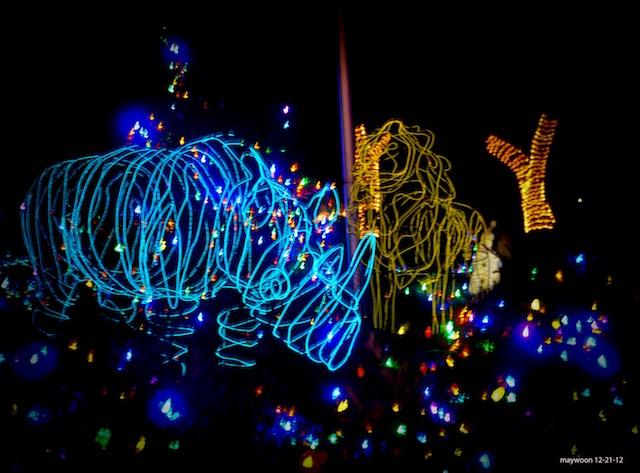 san francisco zoo lights_may woon
