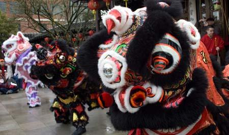 chinese_new_year_lan_su