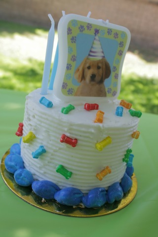 puppy-party-17