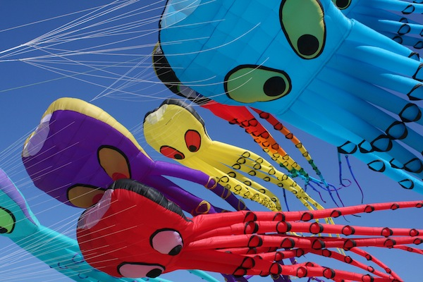 LC Kite Festival 2**