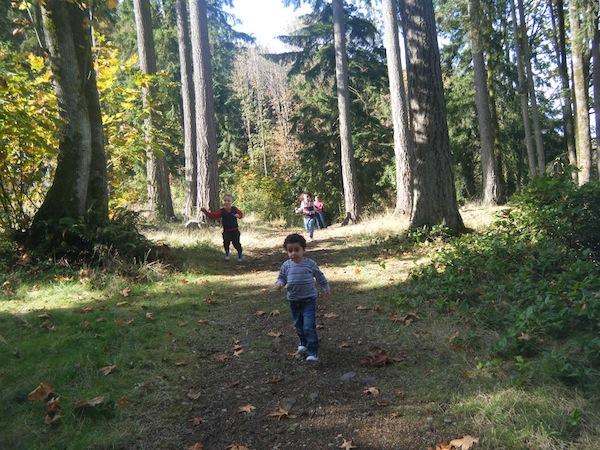 nature-start-hiking