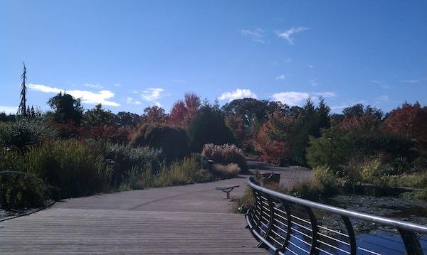 oregon garden foliage