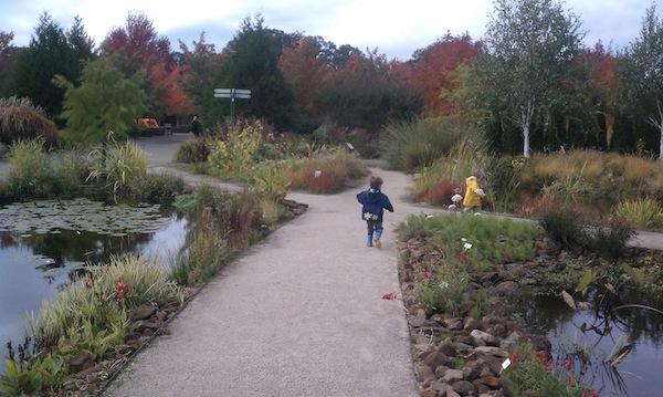 oregon garden kids explore
