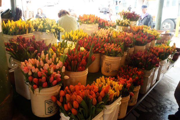 pike=place-flowers