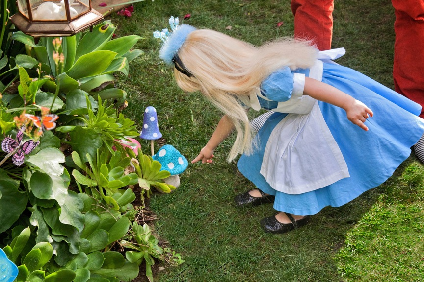 alice-in-wonderland-party-5