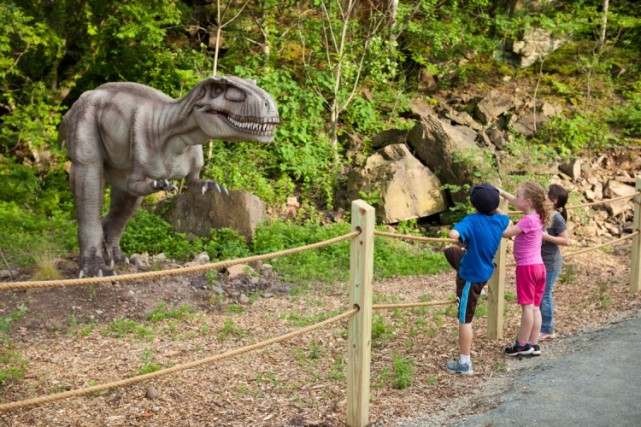 Field Station Dino with Kids