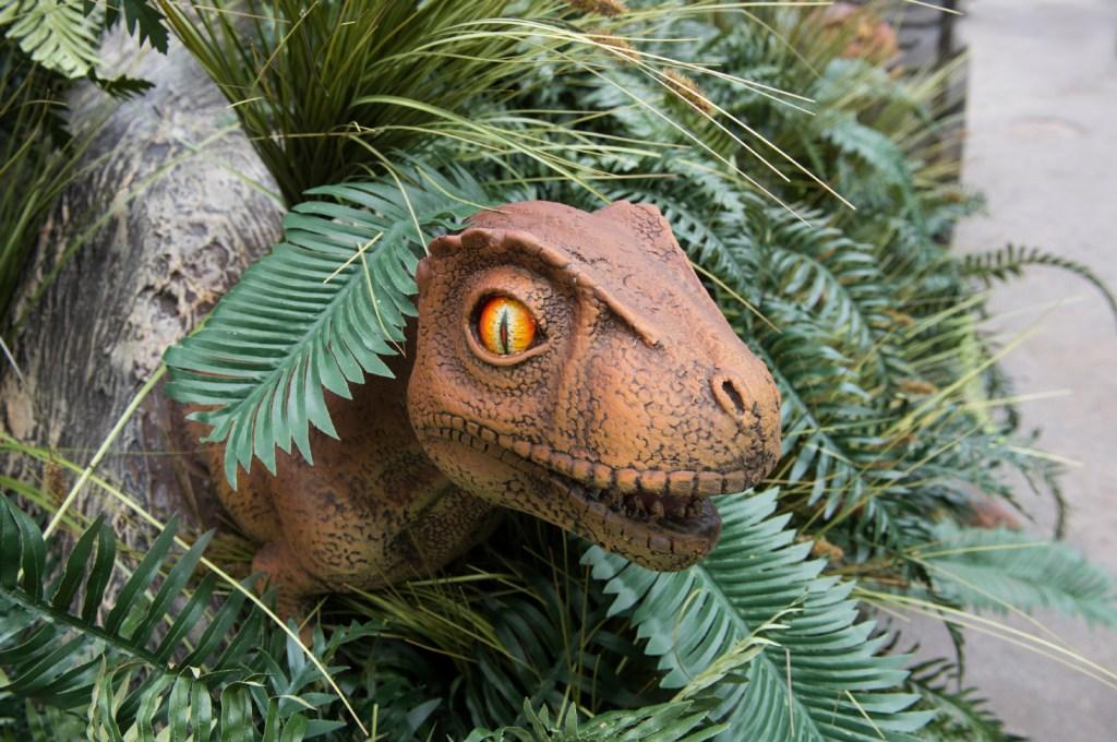 _Julie Larsen Maher 4283 Dinosaur Safari Arrival BZ 05 06 13