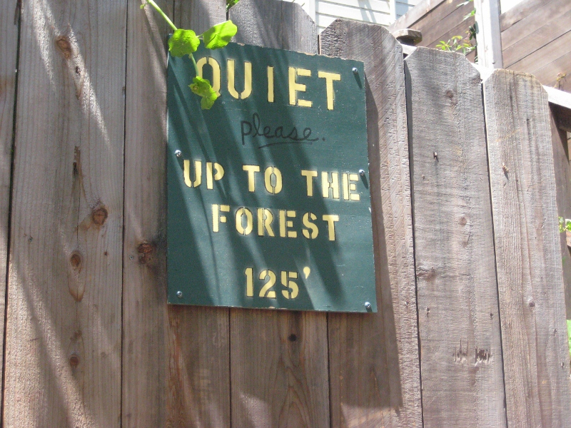 Quiet Up to the Forest Sign (800x600)