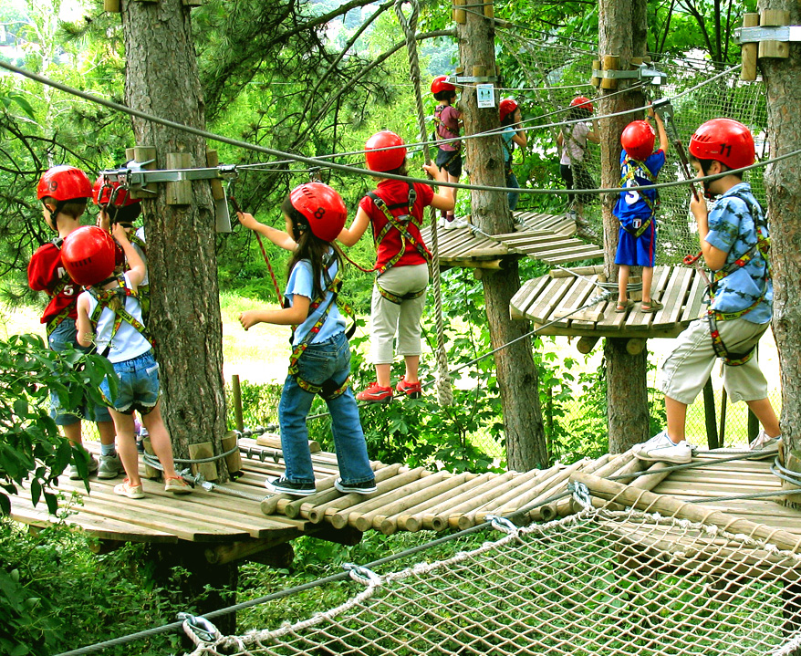 Treetop Quest 4-6 years old
