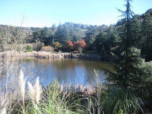 Upper-Franklin-Canyon-Reservoir
