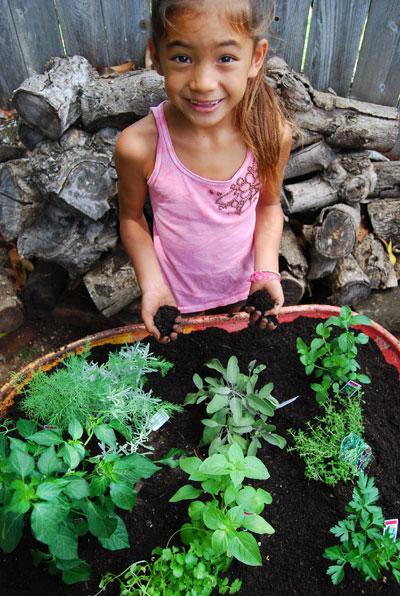 herb-garden-planting-7
