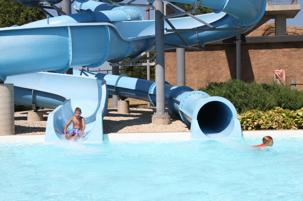 sea-lion-aquatic-park