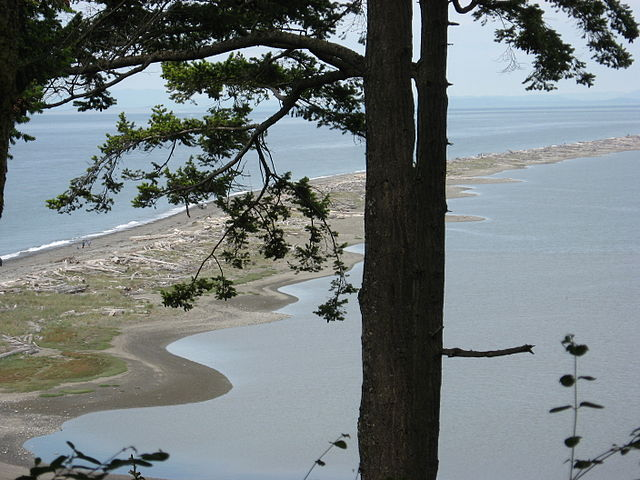 Dungeness_Spit_NWR