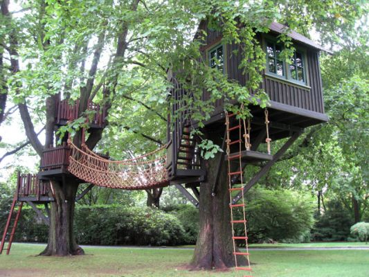 barbara-butler-treehouse