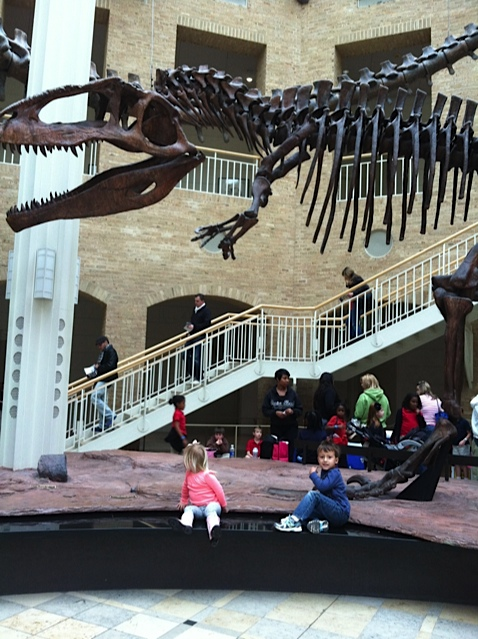 Fernbank_Skeleton