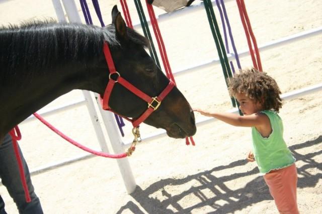 Kid_Pets_Horse_Gentle_Barn