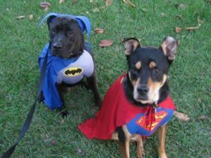 NCM super heroes