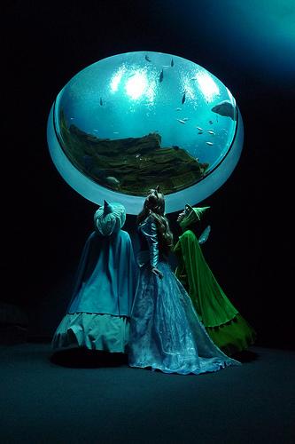 Aquarium-princess