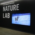 Video display at Natural History Museum's Nature Lab