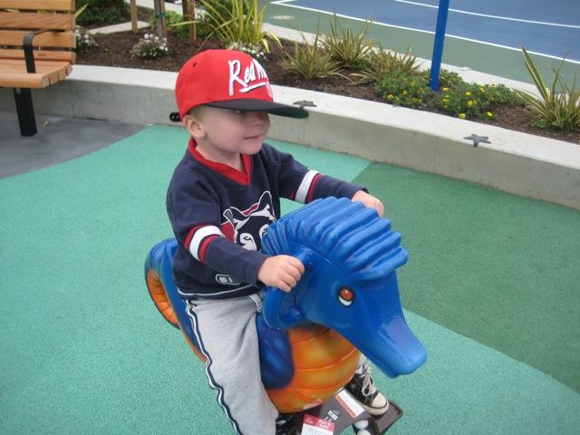 Seahorse_Cabrillo_playground