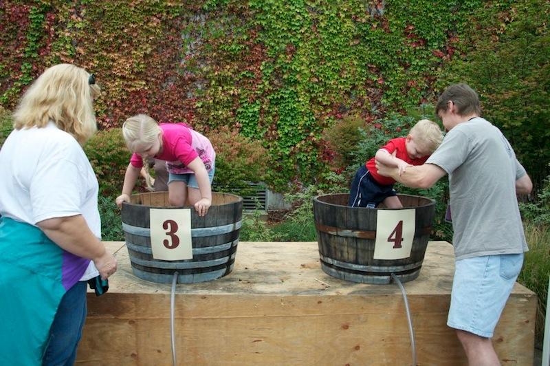 montinore_vineyards