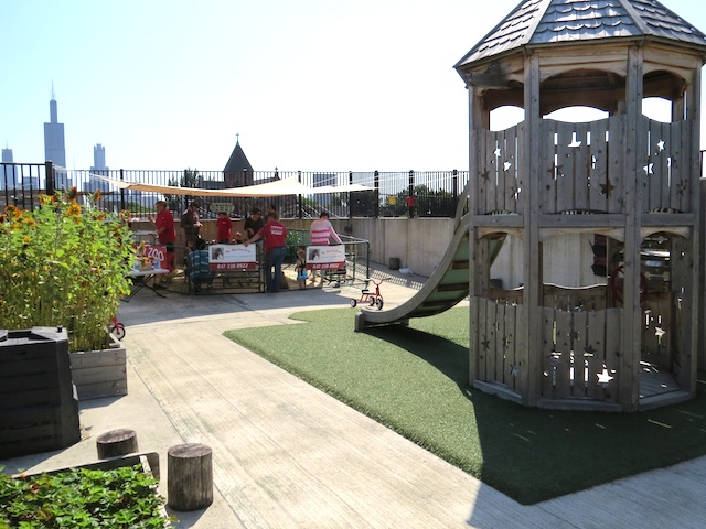 little-green-treehouse-garden