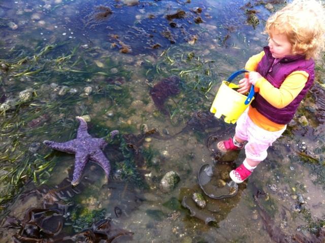 LIttle girl and sea star ocean