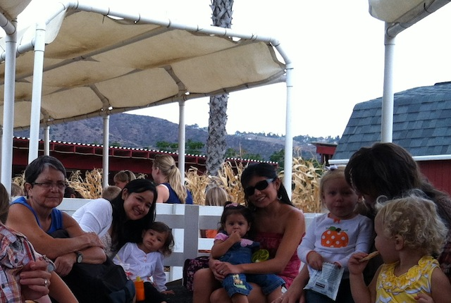 OMA'S PUMPKIN PATCH 11