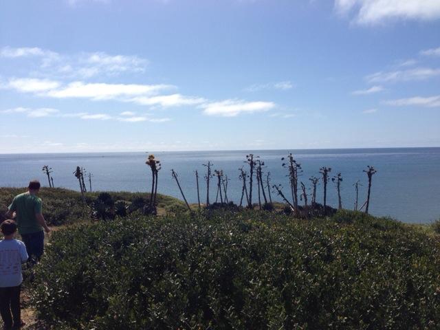Cabrillo - coastal trail