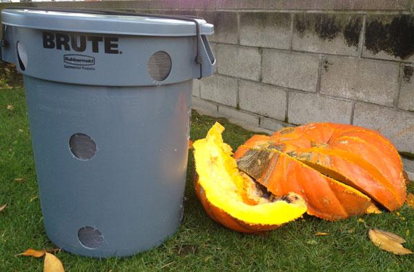 compost-bin-rotting-pumpkins-1