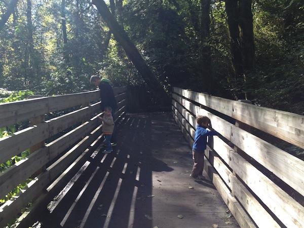 tcsp high bridge