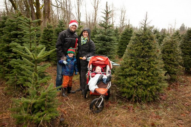 family with stroller tree hunting