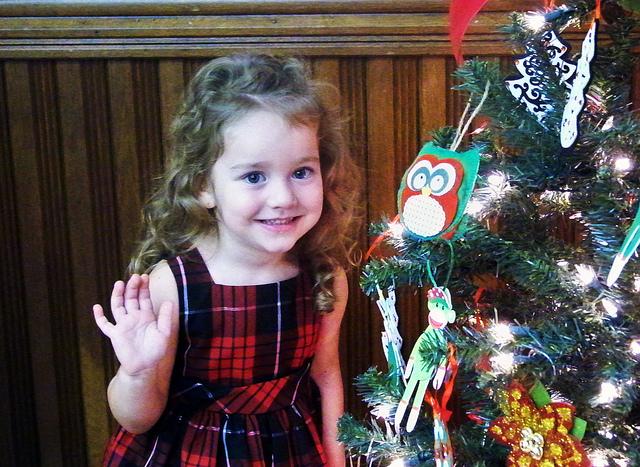 christmas tree cutie