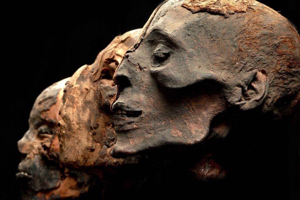 Mummies of the World Day 2
