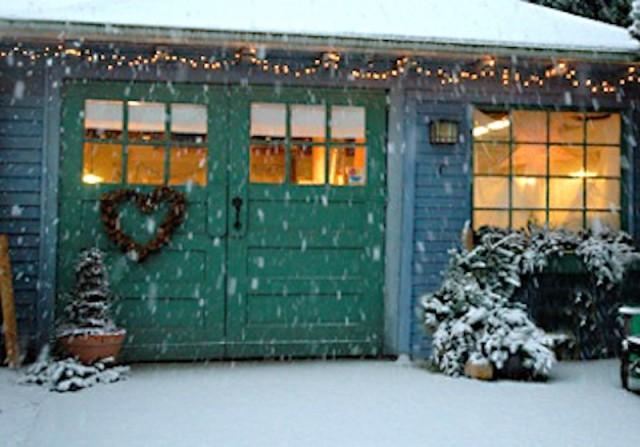 Snowy Studio/Camp Cactus
