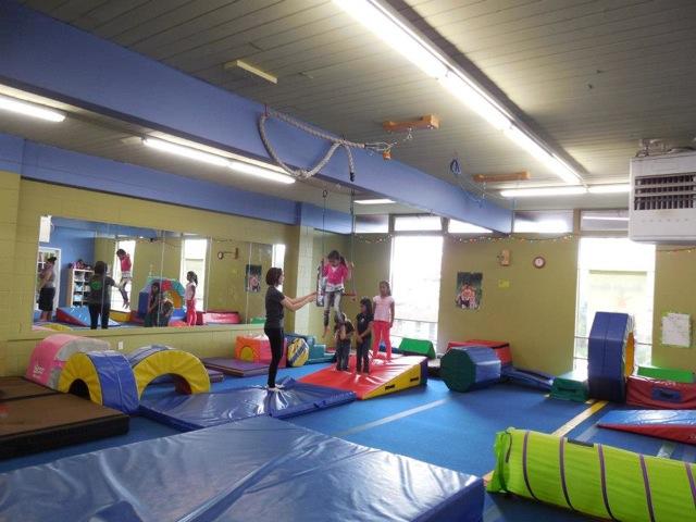 The Jungle Gym Trapeze