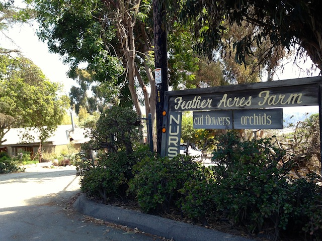 Feather Acre Farms - Entrace Sign