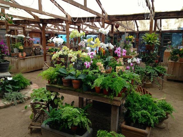 Feather Acre Farms -Nursery