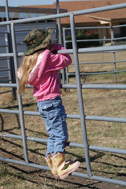 horse-waiting-kid